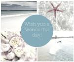 Quote,Wishing,
